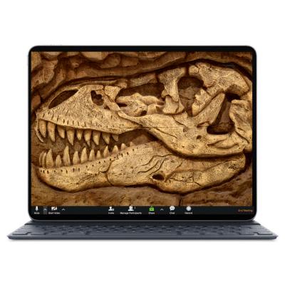 מסך לפטופ כשברקע הדמיית מאובן של ראש של דינוזאור כחלק מחבילת רקעים מעוצבים לזום לילדים ונוער